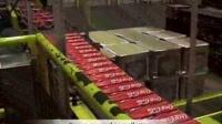 可口可乐易拉罐和PE瓶生产全自动化