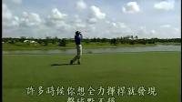 大卫利百特高尔夫-完美击球小秘方