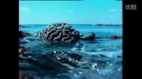 【澳洲佳】澳洲旅游 - 聚焦澳洲: 美丽而脆弱的大堡