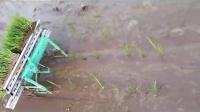 永康鸿林农村实用小型手动插秧机