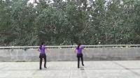 阳光四季美梅广场舞----梦高原