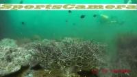 itwo x5 防水摄像机 马尔代夫潜水视频