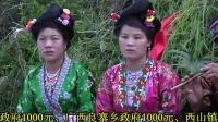 """融水苗歌-2014贵州从江县斗里乡马安""""乌育""""闹鱼节苗歌1"""