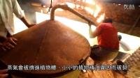 精油科學 蒸氣蒸餾法