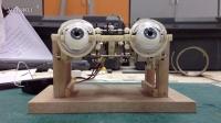 电子机械眼睛  Animatronic Eye