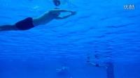 蛙泳:3.2游进中,为什么会沉?
