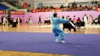 第十届传统武术精英赛太极剑