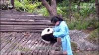 熊猫日记第01期-熊猫围攻奶妈完整版放出