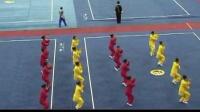 和式太极拳-2004年第一届全国武术运动会段位制项目展示