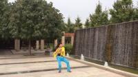 风中梅花abc广场舞系列:我爱你 哦