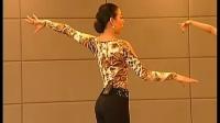 0001.优酷网-2011董岚岚单人拉丁舞花样表演教学3DVD 无师自通