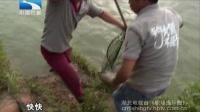 钓鱼大师王桂龙:钓大鱼圆梦武汉改