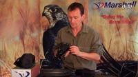 【中华鹰鹘苑】鹰具追踪器,马歇尔Marshall追踪器433和173频率介绍,鹰具制作追踪器!