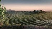 三维动画巨制千亩葡萄园 城堡 酒窖 酿造过程 珠海保税区红酒文化馆 丝路出品