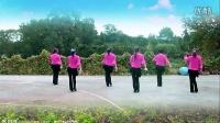 如果我在安顺遇见你 鄂州益馨广场舞 编舞幽谷百合 团队演示