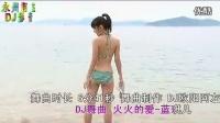 蓝琪儿 - 火火的爱 - Dj 中文舞曲 俊境收藏.mp4_高清_1