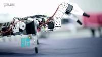 奥松机器人携创意拼装套件登陆宁夏卫视创客星球