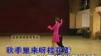 伦巴 四季花 卡拉OK字幕_标清