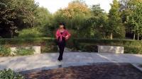 阳光四季美梅广场舞-----落花还有几分香
