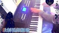 电子琴演奏【爱的世界只有你】