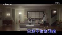 孙艳 - 被情伤过的女人