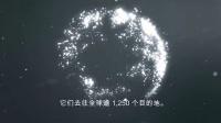 星空联盟——连接世界的方式