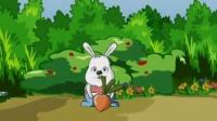 【中国大学生微电影创作大赛】兔子的乐趣