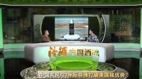 [军情解码]20141021 中国东风31洲际导弹打破美国核优势