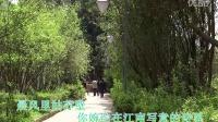 TSH视频田 水韵江南 原唱 风中采莲313