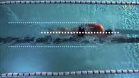 正确的自由泳姿势