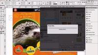 3-3Aquafadas电子出版系列教程:Ave Project Manager-输入和输出