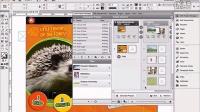 3-2Aquafadas电子出版系列教程:AVE Project Manager:预览和更替ZAVE文件