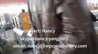 PE WPC profile extrusion line--nancy
