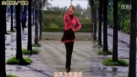 宝鸡刺儿广场舞:粉红情歌