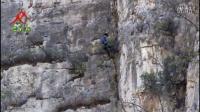 三人行摩天岭基地攀岩速降上升爬树拓展培训活动14年11