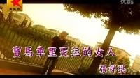 张祥洪-宝马车里哭泣的女人MTV
