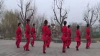 深州丽园广场舞恰恰-15步《大眼睛》演示及动作分解