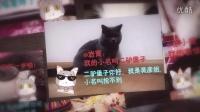 【抢不到后院福利】美喵相册第一期!