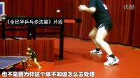 《湿父教球》第10集:樊振东张继科马龙正反手摆速技术_乒乓球教学视频教程