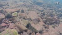 西双版纳某溪流水下摄影03