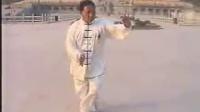 郑州三张之张其林演练陈式太极拳新架一路