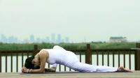 阴瑜伽系列习练教程四部曲【第三部】