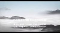 A0176潘阳 火风《过年回家》伴奏 辽宁春晚 试听
