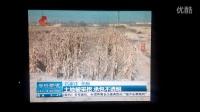 河北经济台今日资讯报道无极县北合庄村委会暗下交易破坏耕地贪污公款