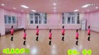 2015最新广场舞开心飞扬广场舞狂欢夜《羡慕嫉妒恨》