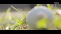 Snowman And The Sun -《一天》電影系列