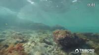 如何保养我的潜水呼吸面罩Easybreath?