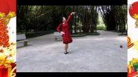 颜儿广场舞2015《新年快乐歌》正反面演示