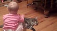 淡定猫咪任由小主人欺负_标清