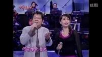 新鸳鸯蝴蝶梦   (蔡幸娟) -  现场版